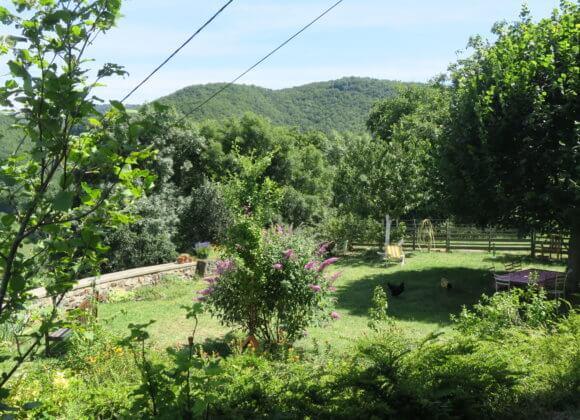 Encore la terrasse en été